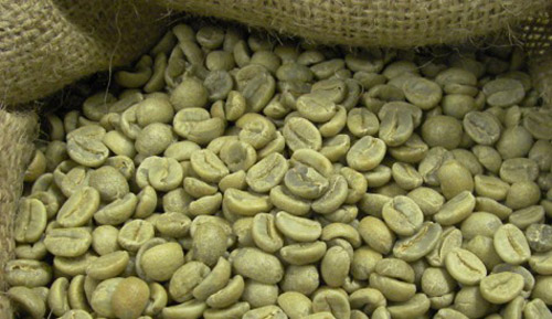 Green Coffee Bean To Boost Weight Loss